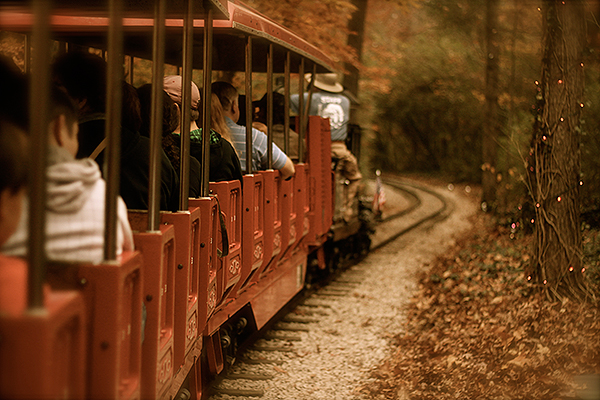 A Train Ride through the Zoo and the Woods